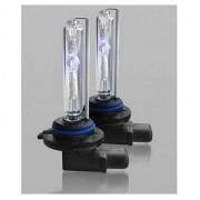 Лампа Xenon Infolight H1 4300K